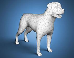 Rottweiler Dog Base Mesh 3D asset