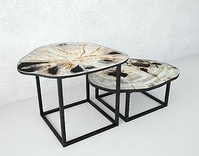 3D model Petrified Wood Slice Coffee Tables 3