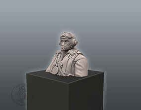 Pilot Bust 3D print model