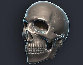 Skull 3D Model scary