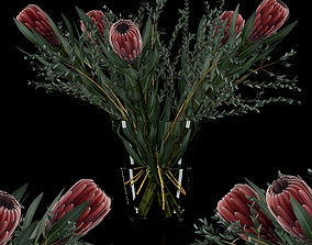 Protea with Eucalyptus parvifolia 3D model