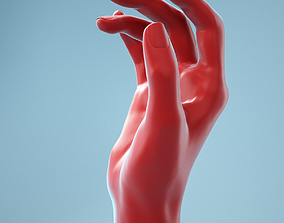 Idle Relaxed Realistic Hand Model 05