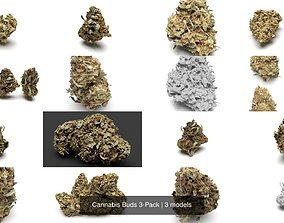 Cannabis Buds 3-Pack 3D smoke