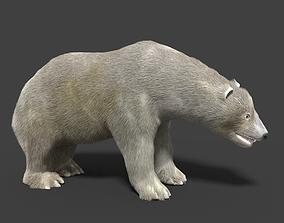 3D Polar Bear Animated