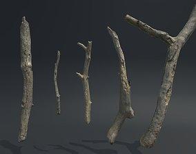 Sticks Vol 1 3D model