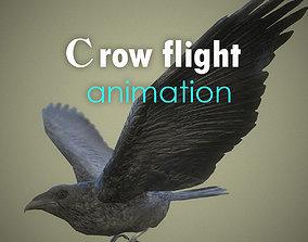Crow flight animation 3D model animated