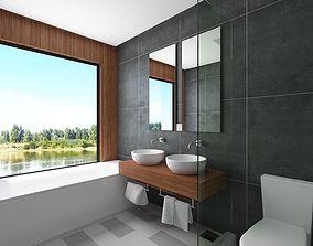 Contemporary Bathroom Scene 3D