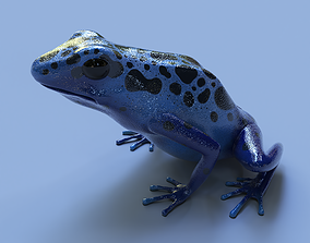 Blue poison dart frog arrow frog Dendrobates 3D model 1