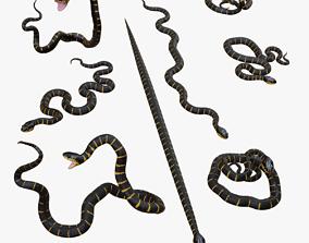low-poly Mangrove Snake - 3d Mesh