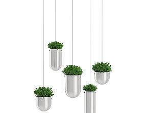 3D Plants in Metal Hanging Pots