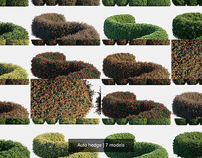 Auto hedge 3D model
