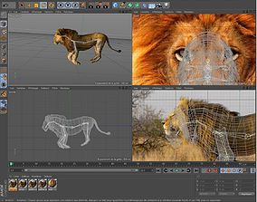 Free Animal 3D Models | CGTrader