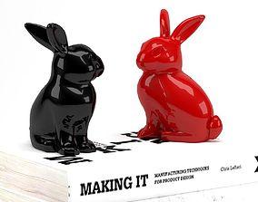 3D Bunny Rabbit Books