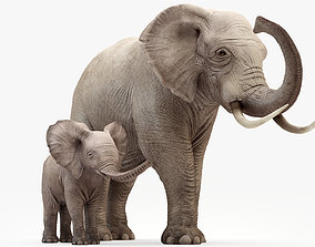 3D model Elephant and Baby Elephant Animated 8K
