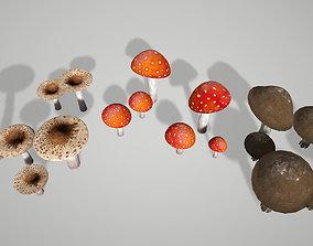 Mushroom Pack 3D model