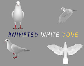 3D asset Realistic Animated White Dove