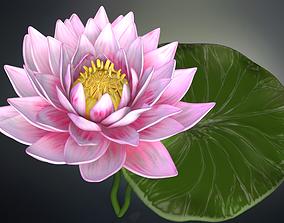 3D Lotus flower high poly