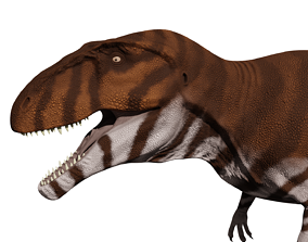 Giganotosaurus carolini 3D model