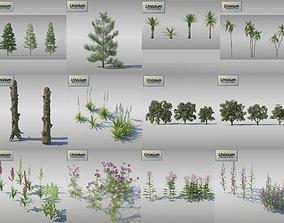 3D model Vegetation - Pack 1