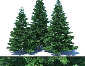 3D Fir-tree Set 02