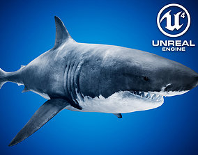 3D model Great White Shark UE4
