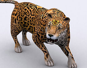 3DRT - Jaguar animated
