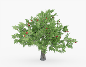 3D asset Apple tree 01