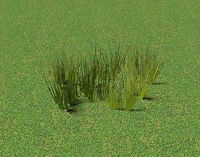 3D model low-poly Green Grass Patch