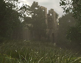 3D Cathedral in Ruins