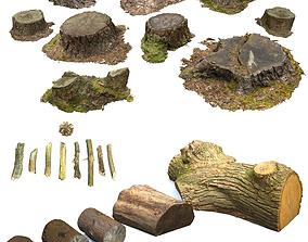 3D Woodland Photoscan Objects