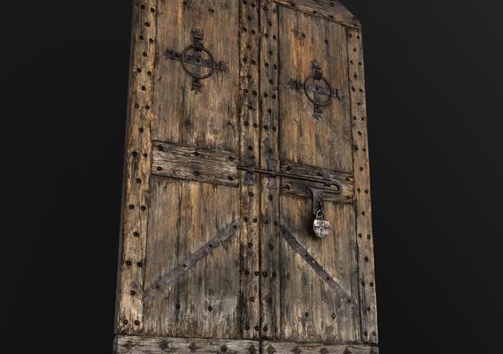 Old Medieval Door (Only Door)