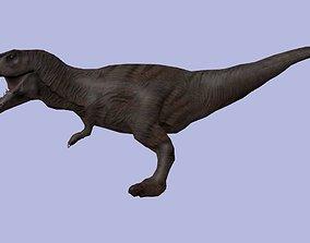 3D model Te - Rex Dinosaur