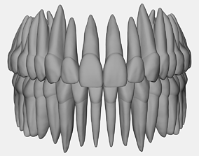 3D print model Azure upper and lower jaw dental anatomy 1