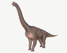 3D asset low-poly Brachiosaurus