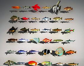 fishs 3D asset