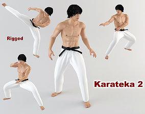 Karateka 2 3D