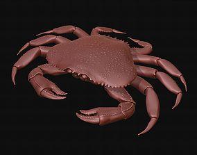 Crab sea 3D print model