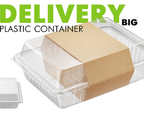 Delivery Big Plastic Container 3D