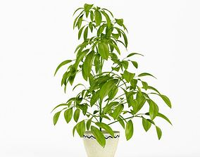3D Green Leafy Potted Plant