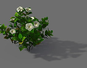 3D Game Model - Forest - Shrub 09
