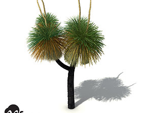 XfrogPlants Australian Grass Tree 3D model