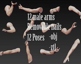 12 Male Arms 3D model