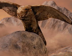 Photorealistic Female Kestrel Bird 3D asset