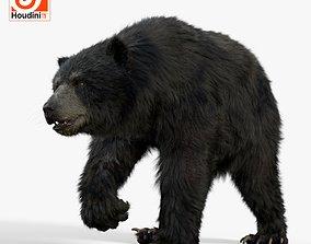 3D model bear black MOD