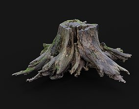 3d scanned tree stump PBR low-poly