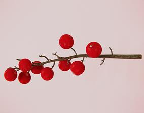 3D Cranberry