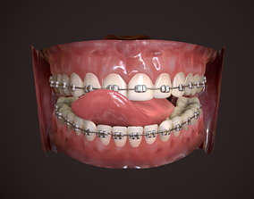 3D model Great Teeth Collection - Mouth for character