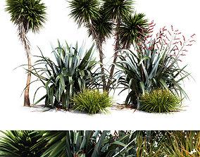 3D model Oceania Plant Set