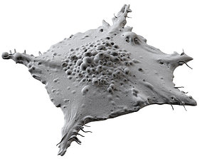 Lung Cancer Cell 3D model