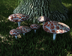 Fungus set 2 3D model game-ready